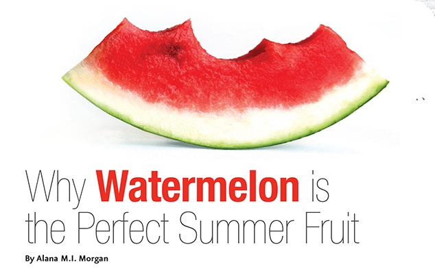 Dazzlewatermelon