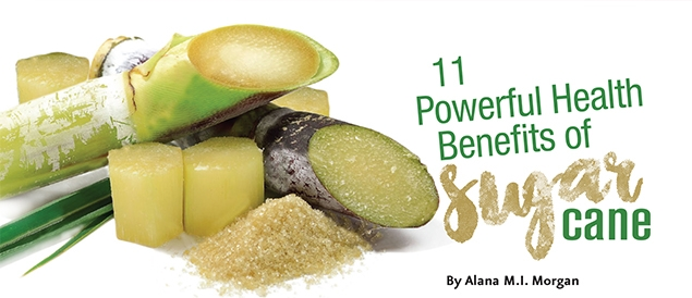 Health Benefits Of Natural Sugar Cane